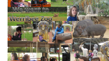 Werribee Zoo Excursion for P6.